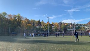 Read more about the article Spielbericht SG West – SpVgg Stuttgart-Ost 2